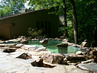 Fountain solutions in atlanta ga fish pond for Swimming pool koi pond conversion